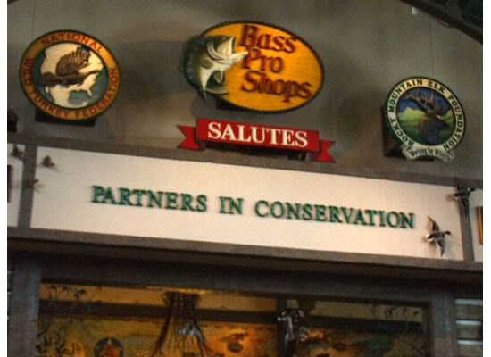 How do you spell conservation