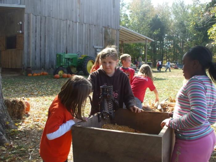 Kayla grinding corn