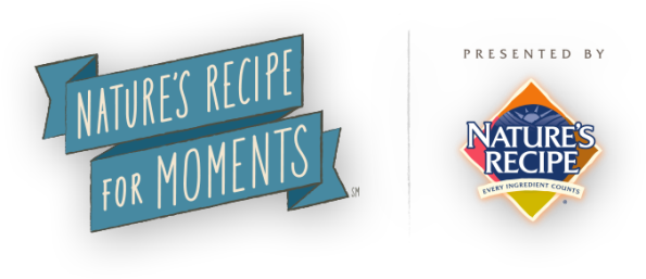 Recipe_For_Moments_Logo_595x257