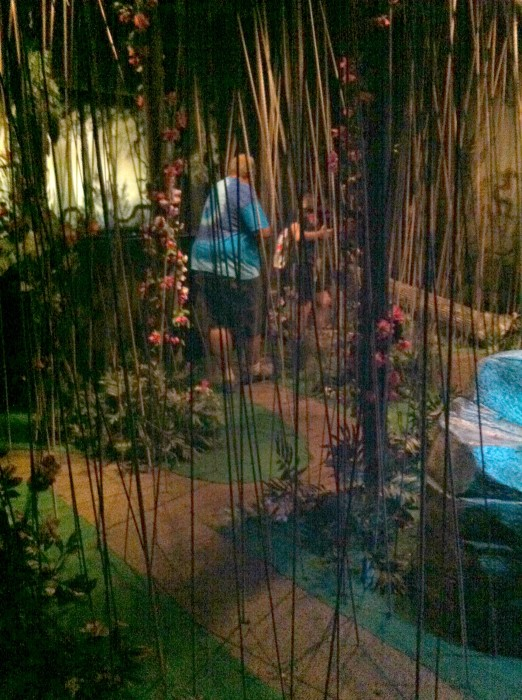 Banyan Tree Bungee Maze at the Butterfly Palace in Branson Missouri