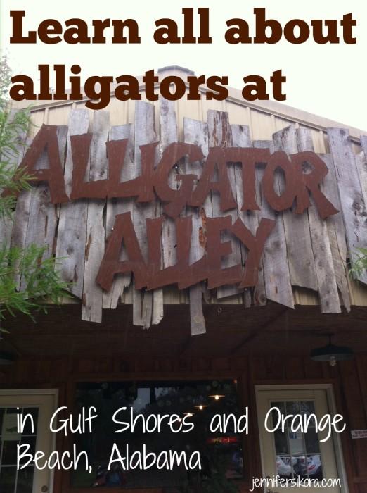 Alligator Alley Gulf Shores and Orange Beach