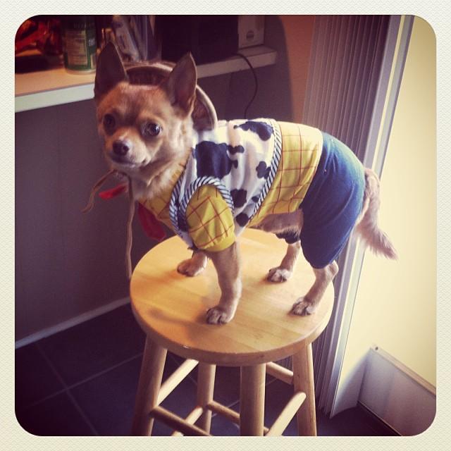 Tucker as Woody