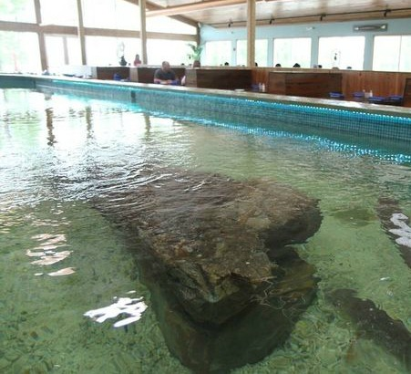 Cayman Grill sting ray tank