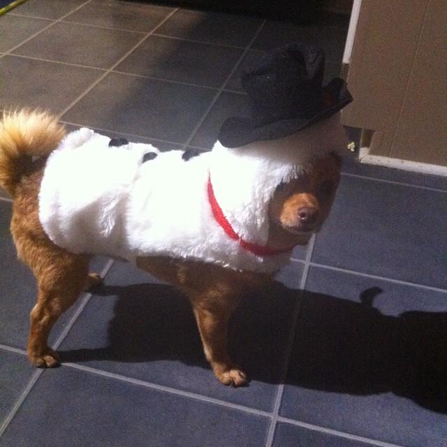 Tucker as Frosty