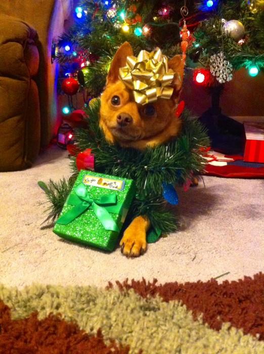 Tucker presents