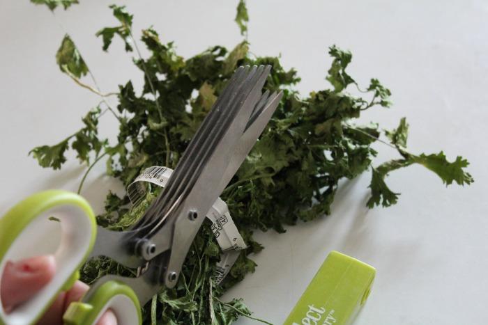 Cutting up cilantro
