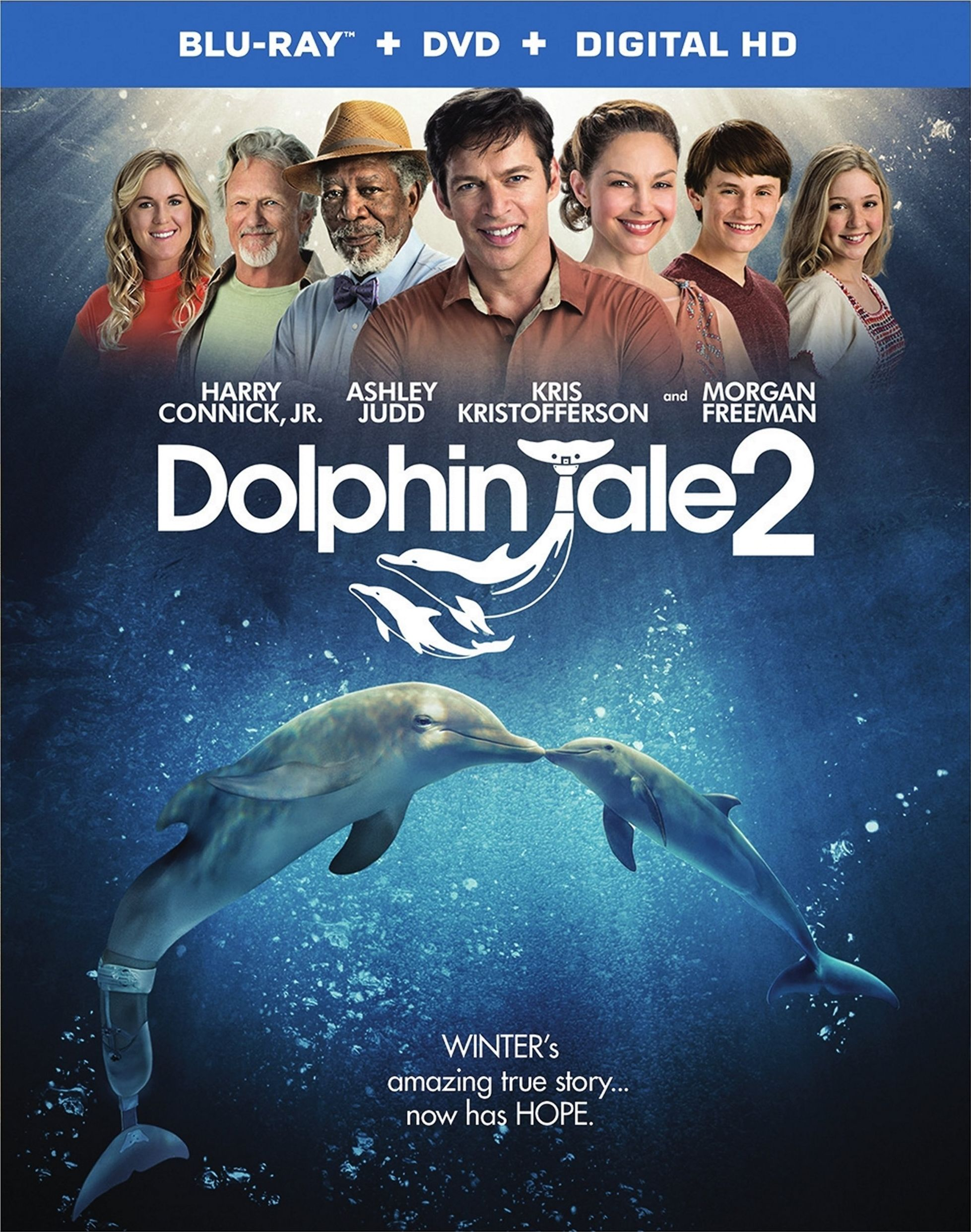 Dolphin Tale 2 – Fun for the Whole Family