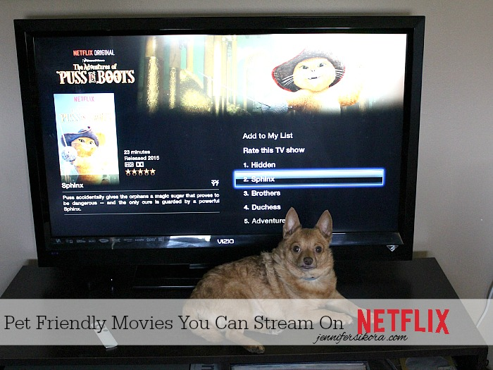 Pet Friendly Movies You Can Stream on Netflix