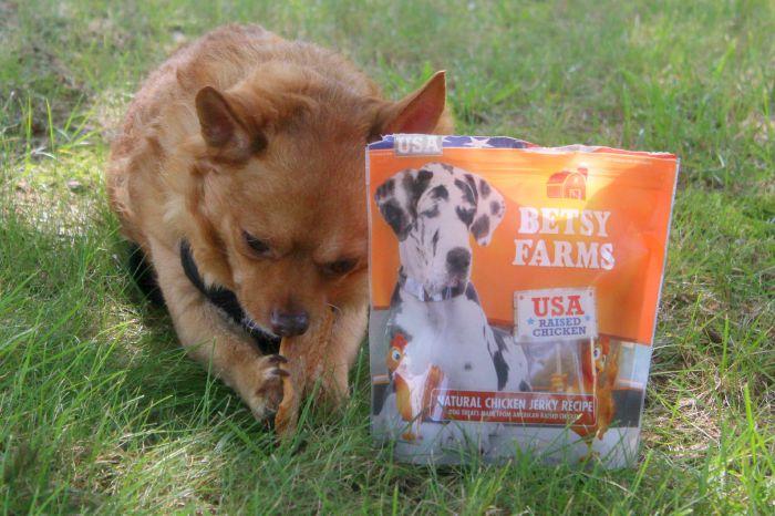 betsy farms 2