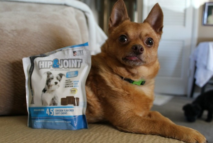 Keep Your Pets Healthy with Vet IQ Minties and Hip & Joint Treats