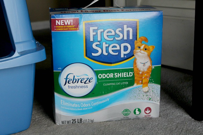 Meow Moment Fresh Step