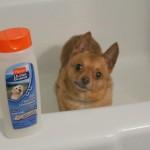 Hartz Shampoo