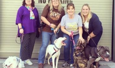 April is National Pet Shelter Volunteer Month