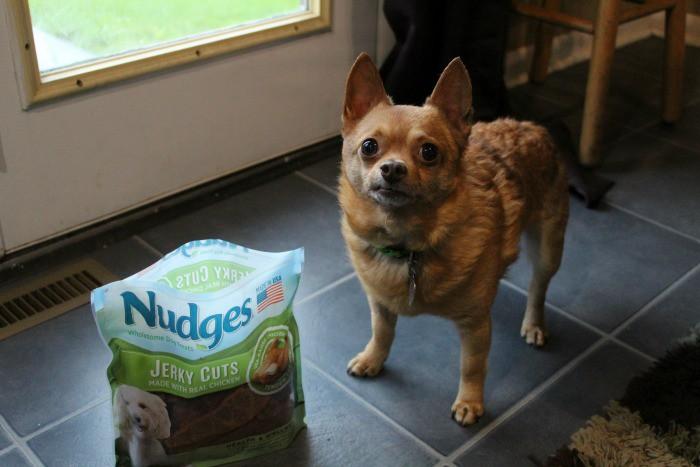 nudges
