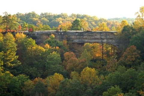 The-Natural-Land-Bridge-in-Kentucky