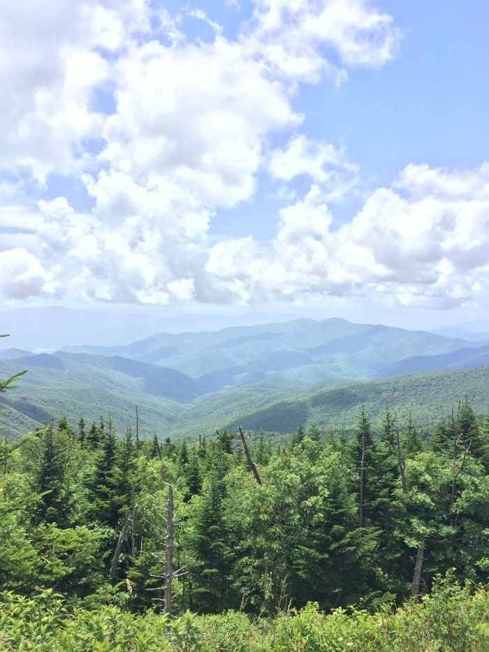 clingmans dome mountain view