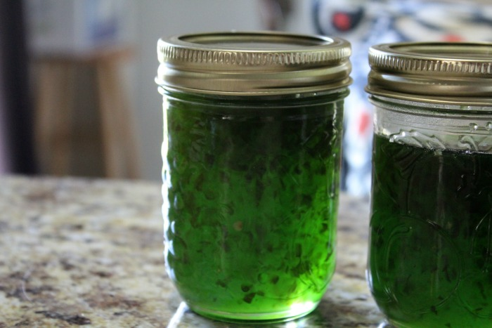 Green Pepper Jelly Top Picture
