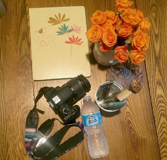 nestle pure life camera