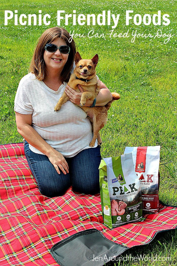 Picnic Friendly Foods You Can Feed Your Dog