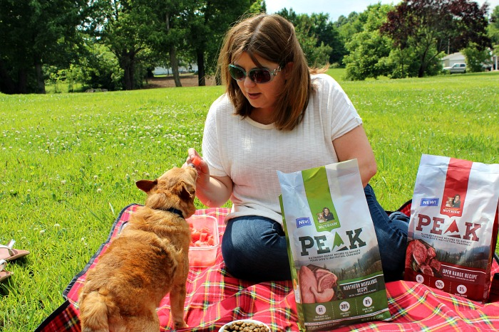 pet friendly picnic foods