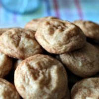 Snickerdoodles – My All Time Favorite Cookie #SummerDessertWeek