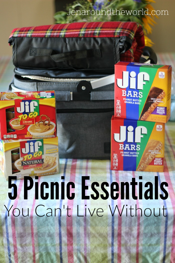 Going On A Picnic Is Great, If You Have The Right Essentials When You Head  Out. Here Are My Top 5 Picnic Essentials You Cannot Live Without.