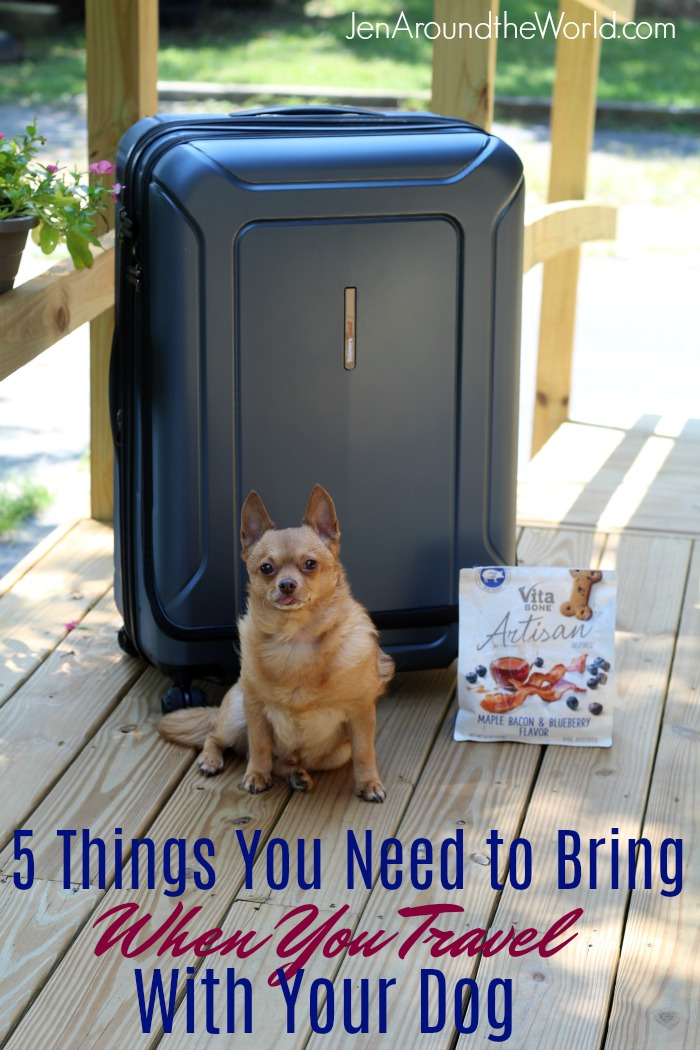 If you are traveling with your dog, here are 5 things you need to make sure to bring with you.