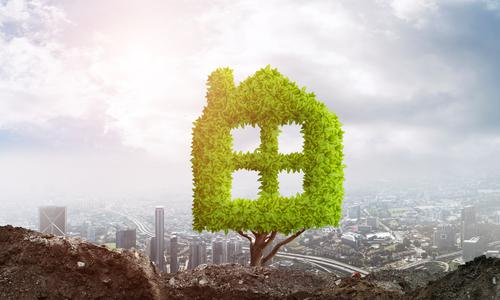 Eco Living – 6 Environmentally-Friendly Ways to Save Money at Home