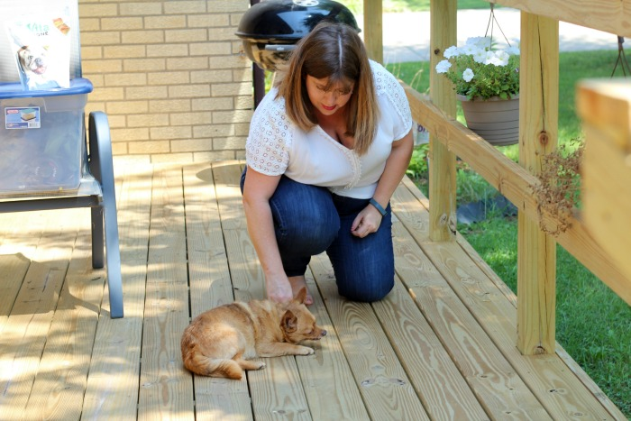 How to teach an old dog new tricks with VitaBone Lil Trainers
