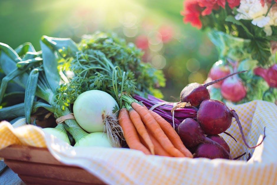 Preparing Your Garden for the Summer