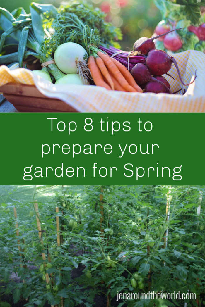 Top 8 tips to prepare your garden for Spring