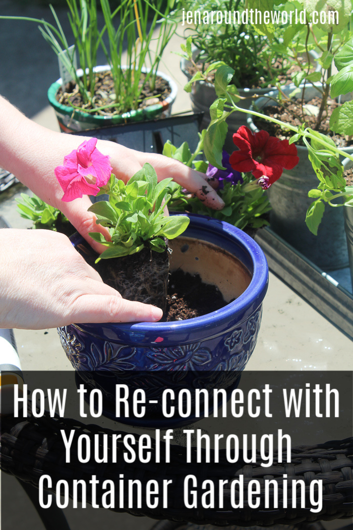 How Container Gardening is Helping Me Rediscover Myself (plus a look at the *NEW* Align Whole Food Blend)