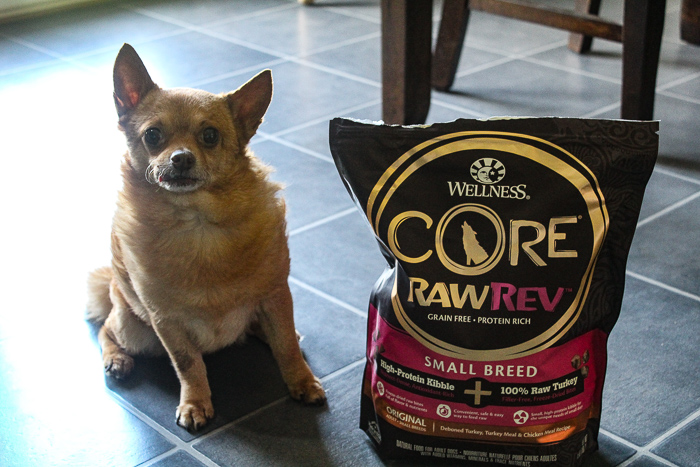 Wellness CORE Dog Food