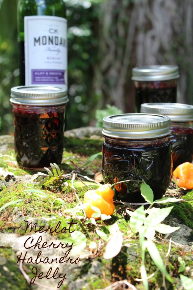 Merlot Cherry Habanero Jelly – Step-by-Step Recipe