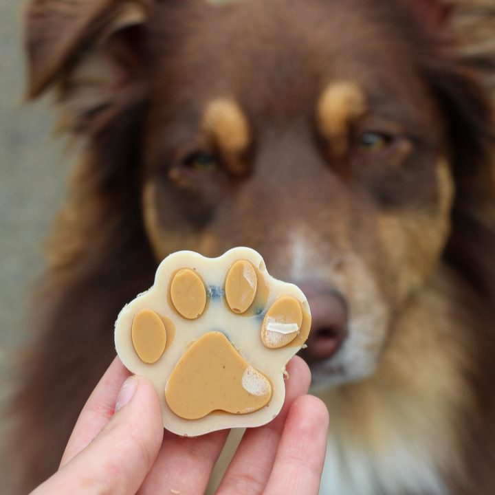 Peanut Butter and Yogurt Frozen Pup Treats